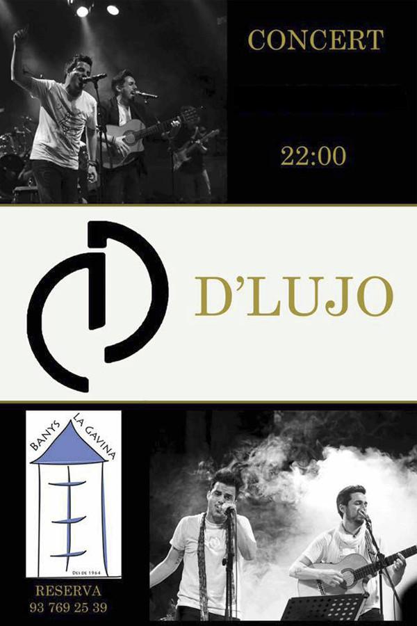 dlujo concert